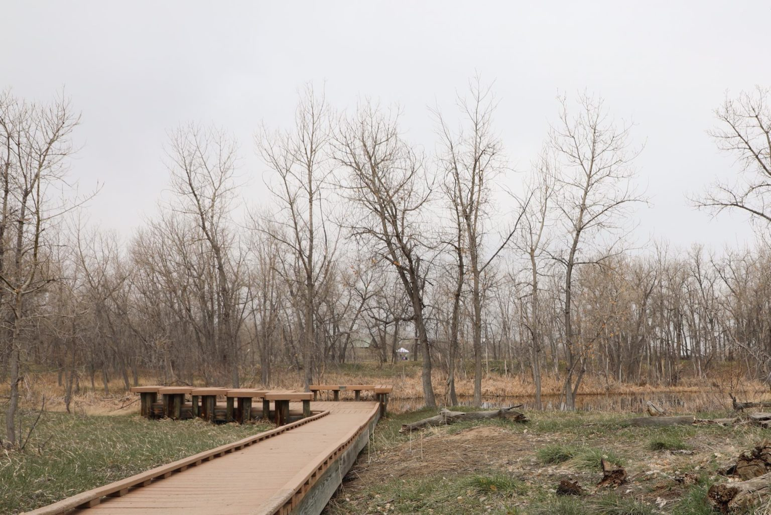 Observation area At Star K Ranch